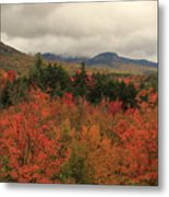 Fall Colors In White Mountains New Hampshire Metal Print