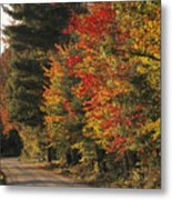 Fall Colors Line A New England Road Metal Print by Heather Perry