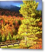 Fall Colors On Grandfather Mountain Ap Metal Print