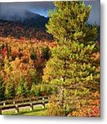 Fall Colors On Grandfather Mountain Metal Print