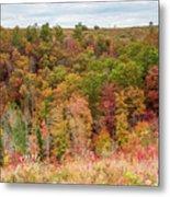 Fall Colors On Hillside Metal Print