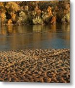 Fall Colors On The Rio Grande 1 Metal Print