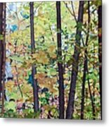 Fall Colour Medley Metal Print