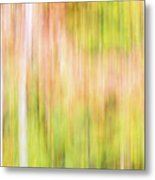 Fall Colours Abstract, Oxtongue River, Algonquin Highlands Metal Print