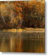 Fall Cove Metal Print