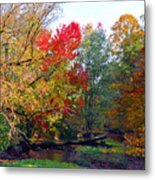 Fall Creek Metal Print