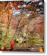 Fall Creek Metal Print