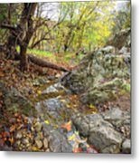 Fall Creek View Metal Print
