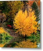 Fall Fireworks Metal Print