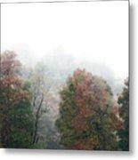 Fall Fog Metal Print