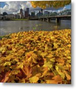 Fall Foliage In Portland Oregon City Metal Print