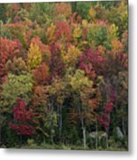 Fall Foliage In The Adirondack Mountains - New York Metal Print by Brendan Reals