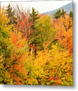 Fall Foliage In The Mountains Metal Print