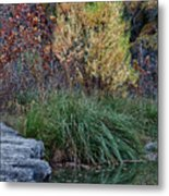 Fall Foliage Reflections At Lost Maples Metal Print