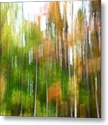 Fall Forest Colors Metal Print
