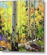 Fall Forest Symphony II Metal Print