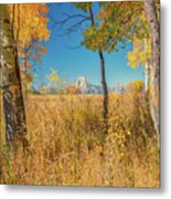 Fall From Oxbow Bend In Grand Tetons Metal Print