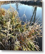 Fall Frost On Grasses Along Nippersink Creek Metal Print