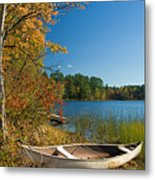Fall Fun Metal Print