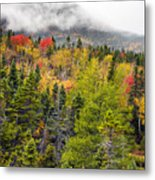 Fall In Baxter State Park Maine Metal Print