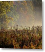 Fall In Cades Cove Metal Print