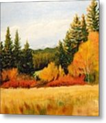 Fall In Chattaroy Metal Print