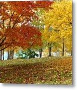 Fall In Kaloya Park 9 Metal Print