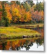 Maine Fall Metal Print