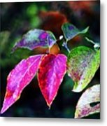 Fall In Shades Of Purple Metal Print