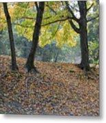 Fall In Stony Brook Metal Print