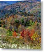 Fall In Tennessee Metal Print