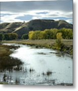 Fall In The River Bottom Metal Print