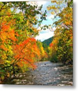 Fall In The Smokey Mountains  Metal Print