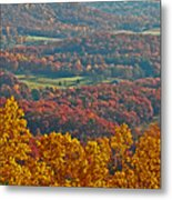 Fall In The Valley Metal Print