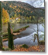 Fall In Vosges National Park Metal Print