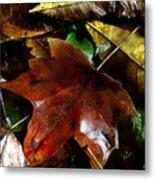 Fall Into Fall Metal Print