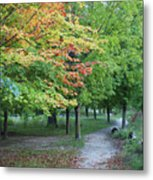 Fall Is Arriving Metal Print