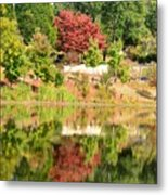 Fall Tree -loganville Georgia Metal Print