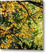 Fall Leaves In The Smokies Metal Print