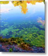 Barely Touching The Surface Of The Water Metal Print