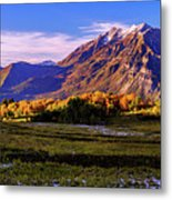 Fall Meadow Metal Print by Chad Dutson