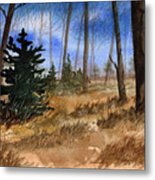 Fall Meadow Metal Print