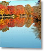 Fall Morning In East Lyme 1 Metal Print