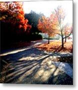 Fall Morning Metal Print