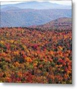 Fall Mountains #3 Metal Print