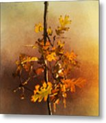 Fall Oak Leaves Metal Print