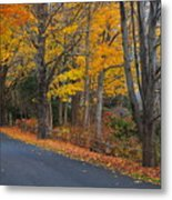 Fall On The Cape Metal Print