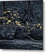 Fall On The Rocks Metal Print