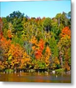 Fall On The Water Metal Print
