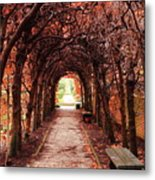 Fall Passage Metal Print